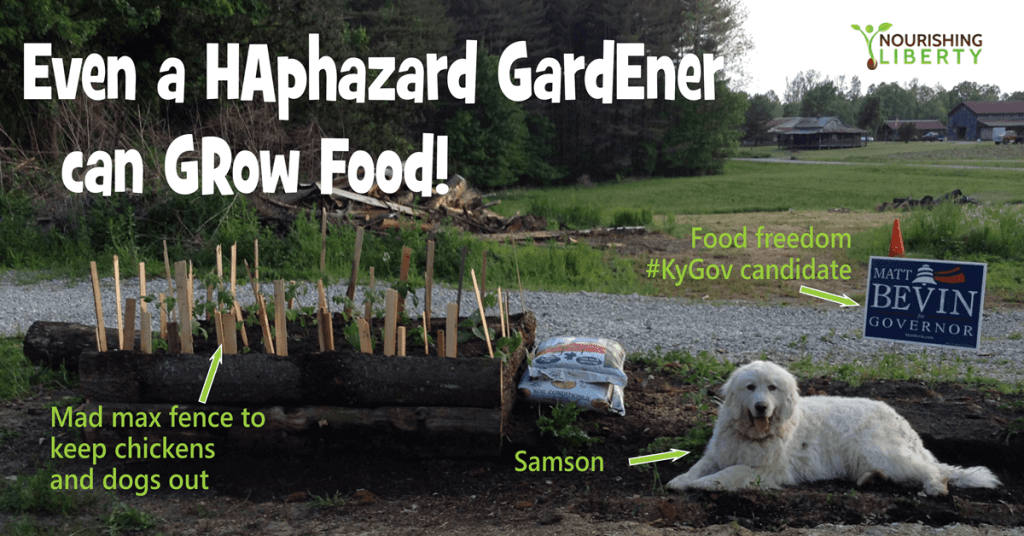 Even a HAphazard GardEner can GRow Food!