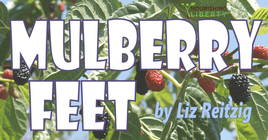 mulberry feet: everybody needs some!