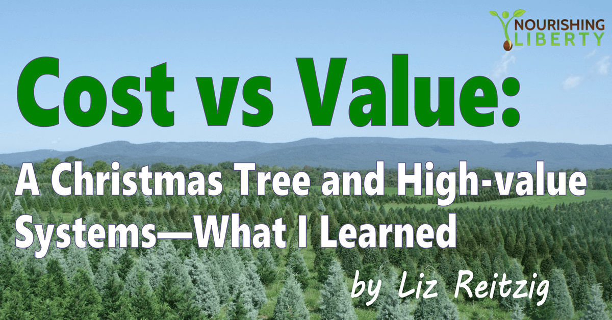 Cost Vs Value: What I Learned that changed my life