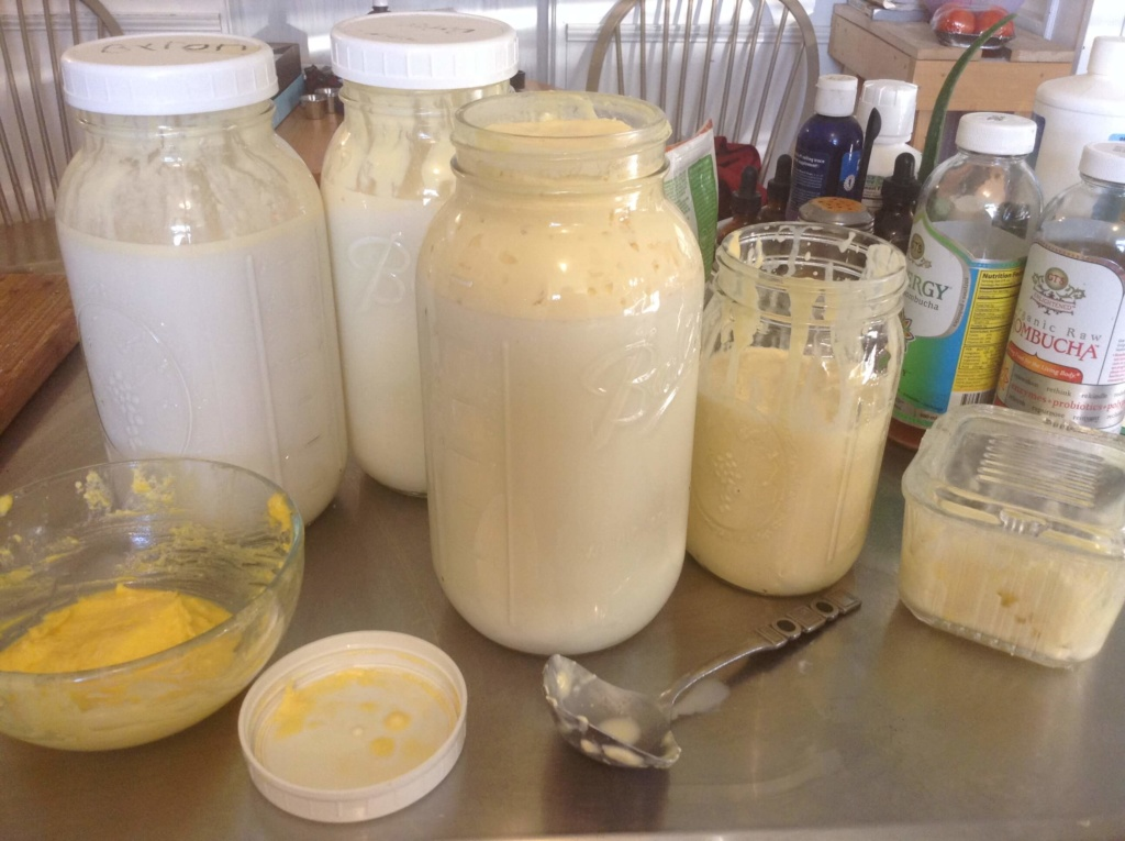 Get 4 Foods from 1 Gallon of Raw Milk – Pt 1